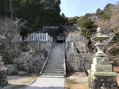 高家神社(千葉県千倉駅) - 手水舎の写真
