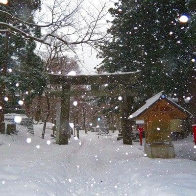 鳥取県大神山神社奥宮の鳥居