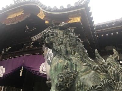 杭全神社(大阪府平野(JR)駅) - 狛犬の写真