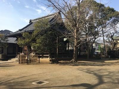 稲荷神社(千葉県国府台駅) - 本殿・本堂の写真
