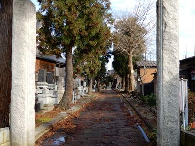 新潟県光福寺の写真