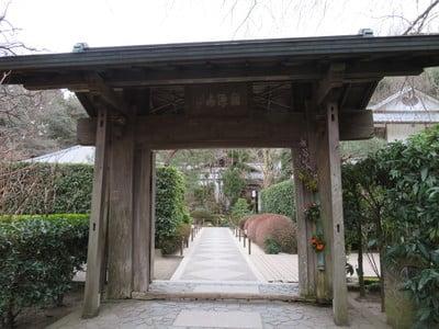 神奈川県明月院の山門