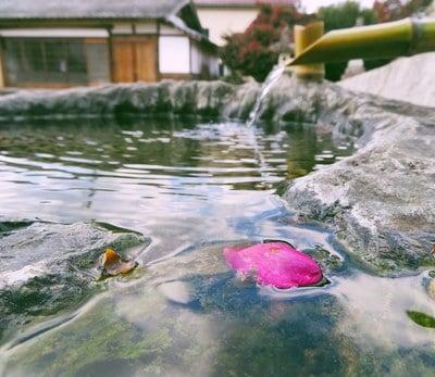 勝部神社の手水