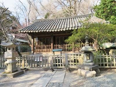 神奈川県高徳院の写真