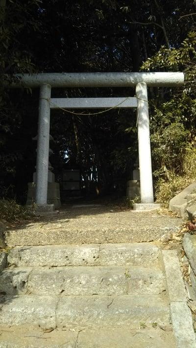 氏神神社(黒澤氏)の鳥居