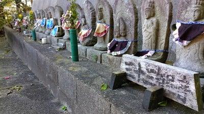 愛知県樫木山 観音寺の写真