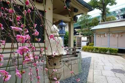陶器神社(坐摩神社末社)の建物その他