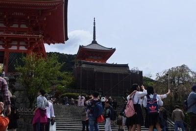 清水寺(京都府清水五条駅) - 塔の写真