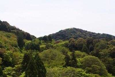 清水寺(京都府清水五条駅) - 自然の写真