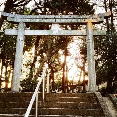 東京都代々木八幡宮の鳥居