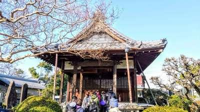 愛知県勅願山 長幡寺の本殿