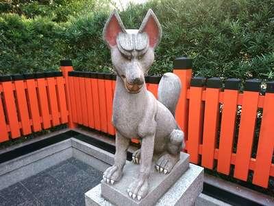 稲荷大明神(大阪府梅田(大阪市営)駅) - 狛犬の写真