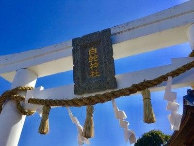 山口県岩国白蛇神社の鳥居
