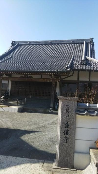 鹿児島県養信寺の写真