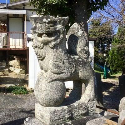 今津天満宮の狛犬
