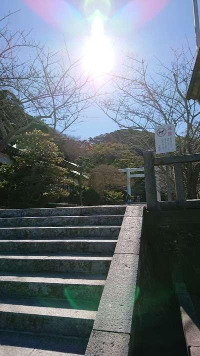 安房神社の建物その他