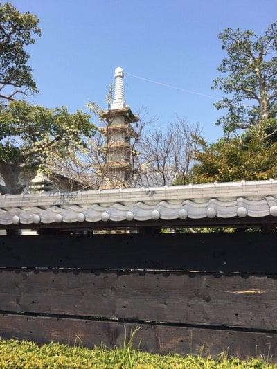 耕雲院の近くの神社お寺|西住院