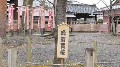 豊国神社(京都府七条駅) - その他建物の写真