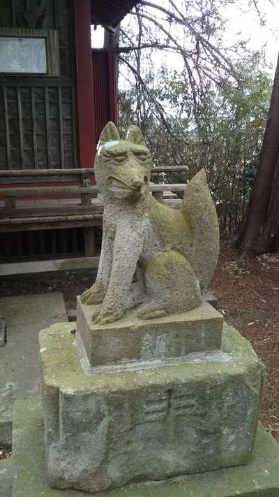 葵稲荷神社の狛犬