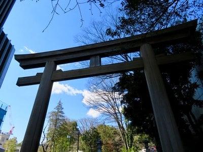 東京都東郷神社の鳥居