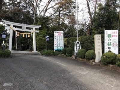 星川杉山神社の建物その他