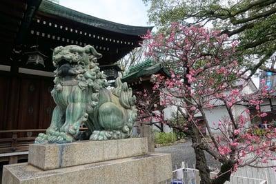 生根神社(大阪府住吉駅) - 未分類の写真