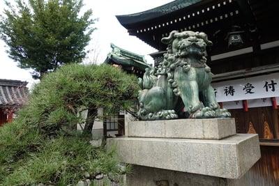 生根神社(大阪府住吉駅) - 狛犬の写真