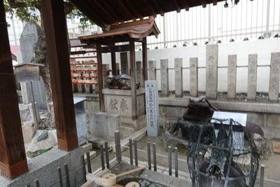 大阪府生根神社の写真