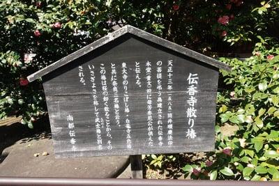 伝香寺の歴史
