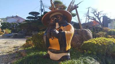 埼玉県海蔵寺の写真