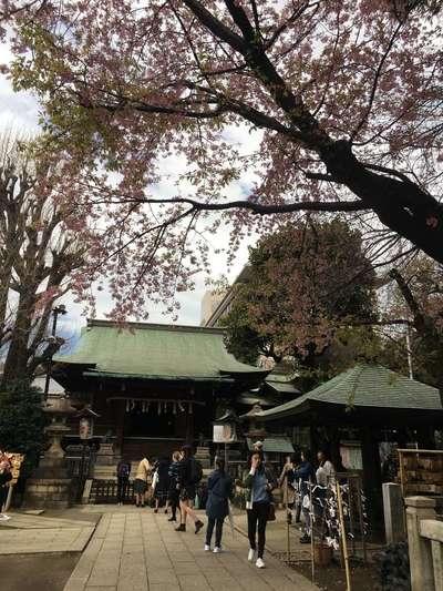 五條天神社(東京都京成上野駅) - その他建物の写真