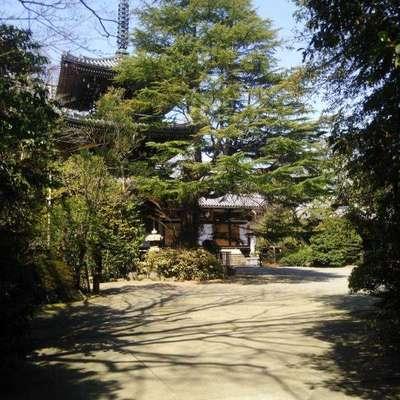 東禅寺の建物その他