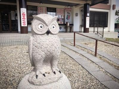 函館護国神社の狛犬