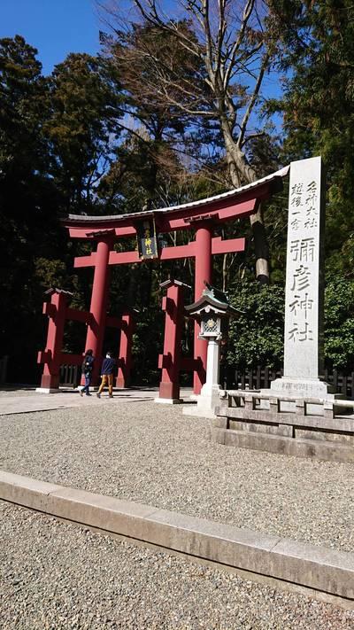 新潟県彌彦神社の鳥居