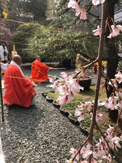 自性院の近くの神社お寺|普門院