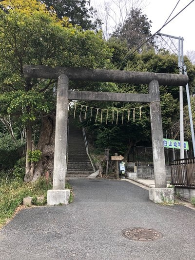 神奈川県白山社の鳥居