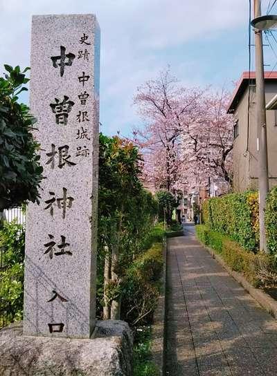 東京都中曽根神社の建物その他