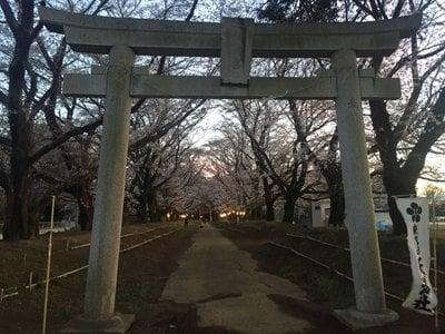 東蕗田天満社の鳥居