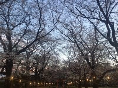 東蕗田天満社の自然