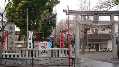 神奈川県若宮八幡宮 の鳥居