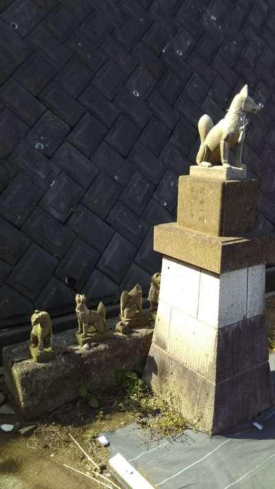 大蔵稲荷神社の狛犬