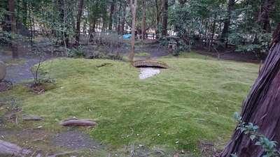 野宮神社の庭園