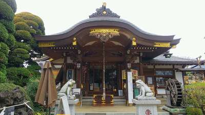 埼玉県水宮神社の本殿