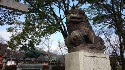 富士山本宮浅間大社(静岡県富士宮駅) - 狛犬の写真