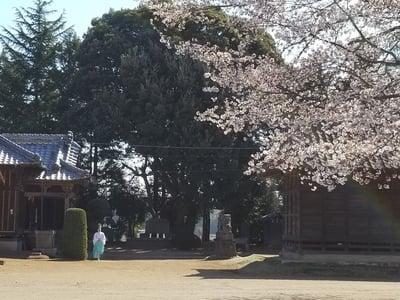 香取社(伏木香取神社)の建物その他