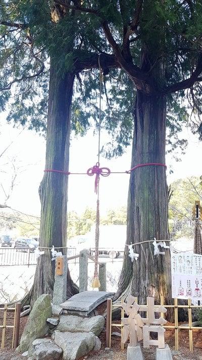 武雄神社の自然