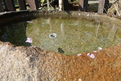 金峯山寺の手水