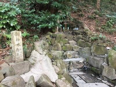 姉埼神社の建物その他