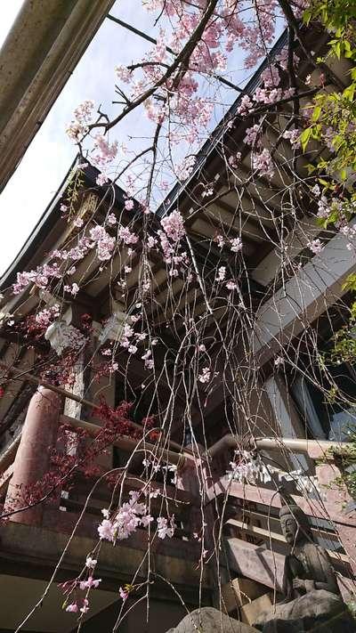 東京都永昌院の建物その他