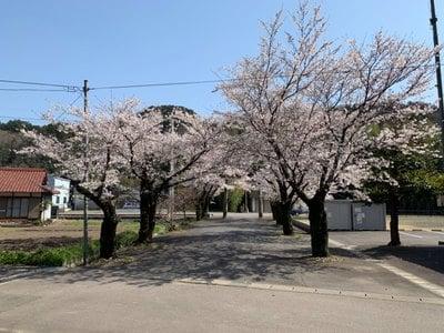 岐阜県南宮神社の写真